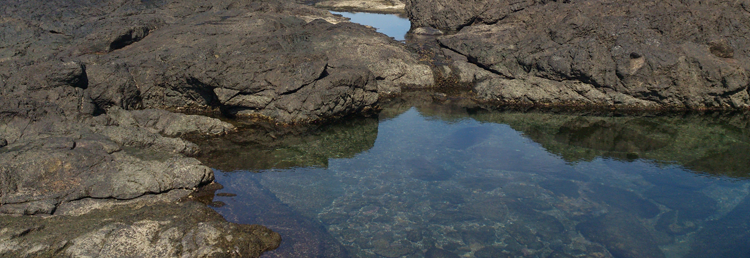 playa-ventanas-tide-pools