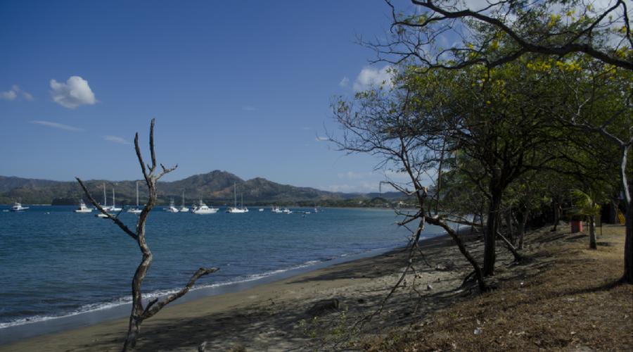 flamingo bay costa rica
