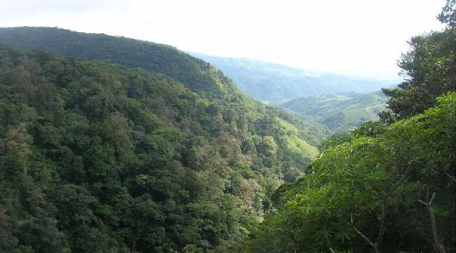 tenorio national park mirador
