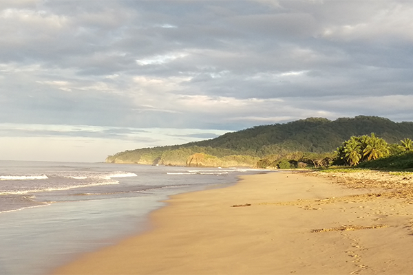 Playa-Grande-Costa-Rica's-Gold-Coast